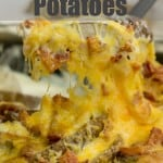 Potato Skins with cheese bacon and sour cream ranch sauce