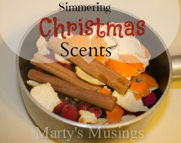 How To Make Holiday Spice Simmering Stovetop Potpourri Recipes ...