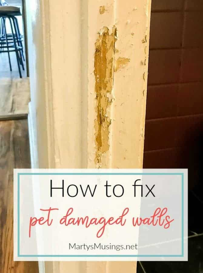 Has your favorite pet made a mess of your walls or cabinets? These tips will show you how to repair pet damaged walls by sanding, spackling, priming and painting them to look like new!