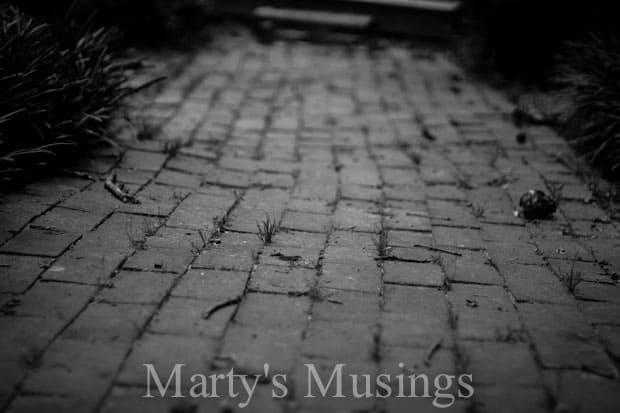 The More I Seek You by Marty's Musings