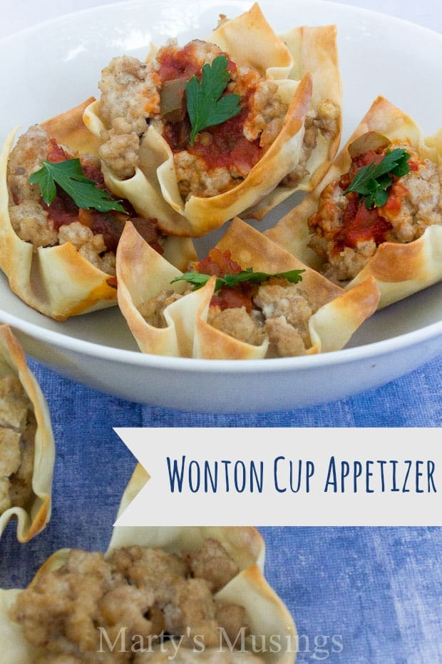 #ad Wonton Cup Appetizer with Tyson Ground Chicken