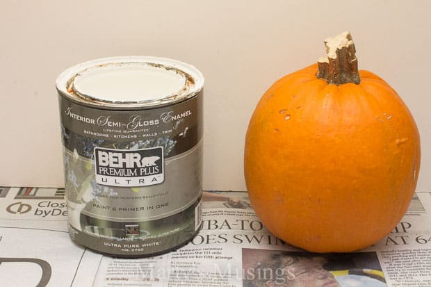 Painted Pumpkin Craft from Marty's Musings