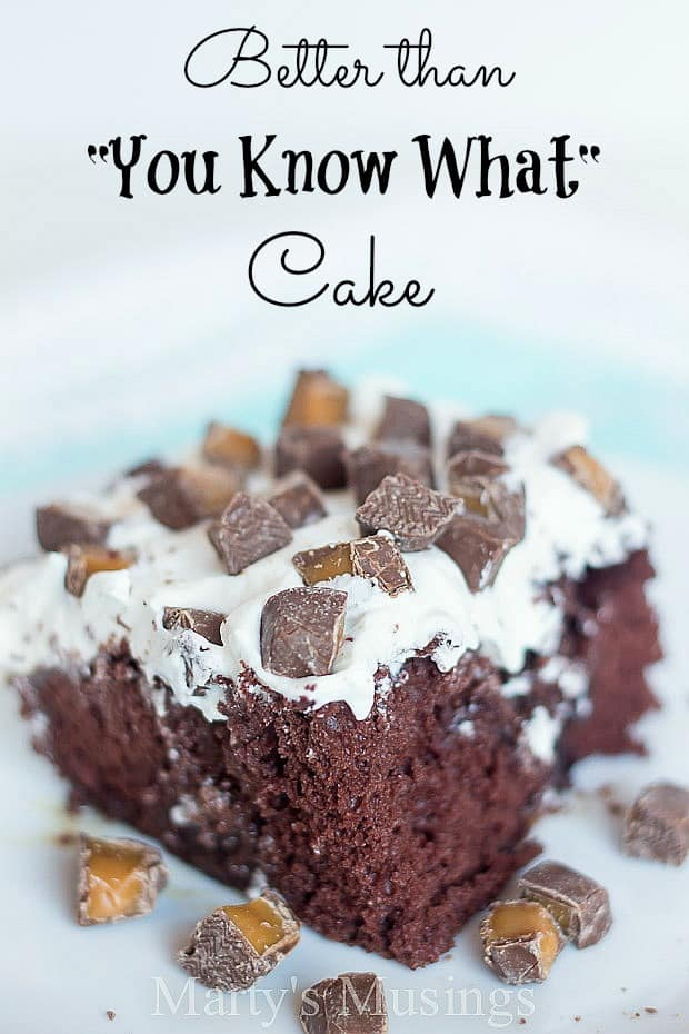 Better than You Know What Cake - Marty's Musings