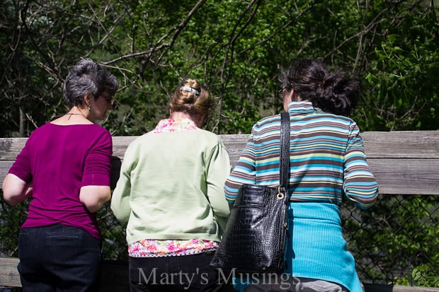 Celebrating the Homeschool Mom - Marty's Musings