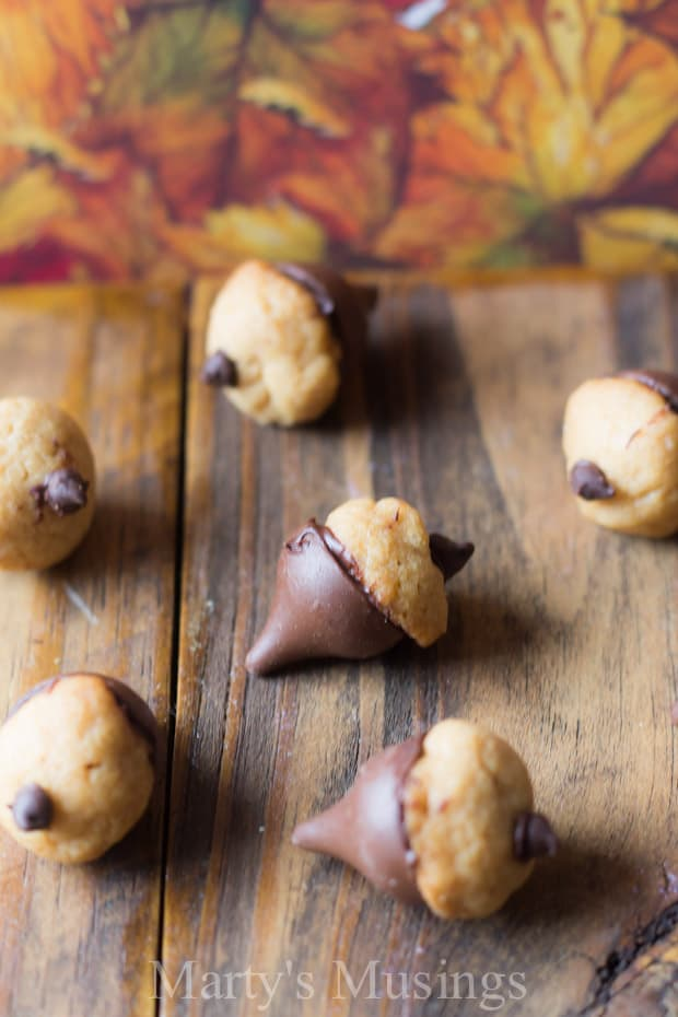 Peanut Butter and Chocolate Acorn Cookies - Marty's Musings