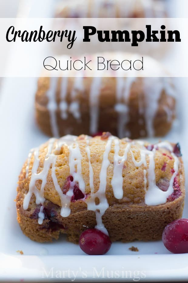 Cranberry Pumpkin Quick Bread - Marty's Musings