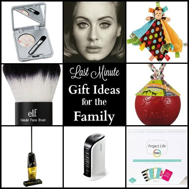 These last minute Christmas gift ideas contain suggestions for the whole family from kids to adults including tools, makeup, baby and pet toys and more!