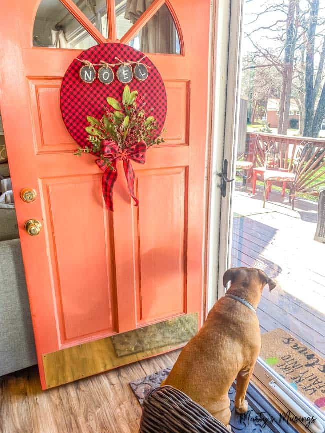 buffalo check wreath on coral front door with dog